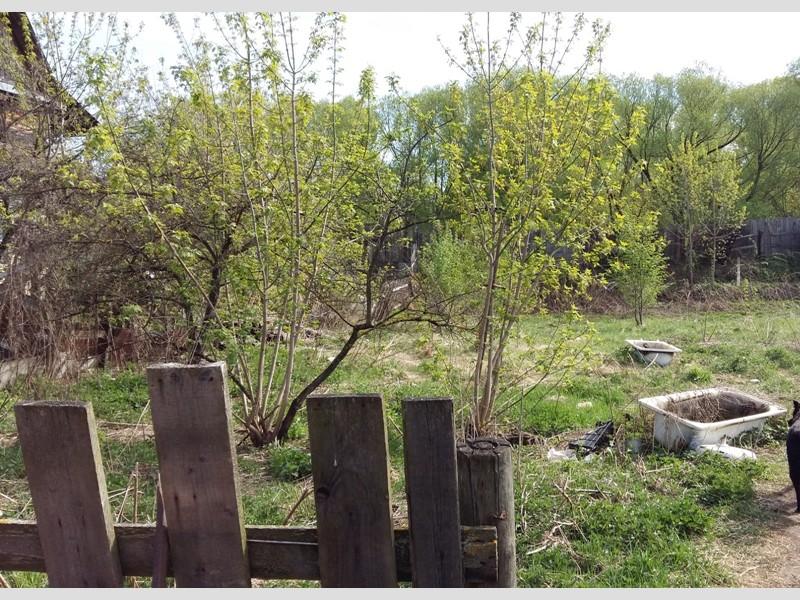 Продам участок по адресу Россия, Тверская область, Г Тверь, Тихвинская фото 3 по выгодной цене