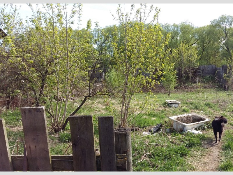 Продам участок по адресу Россия, Тверская область, Г Тверь, Тихвинская фото 4 по выгодной цене