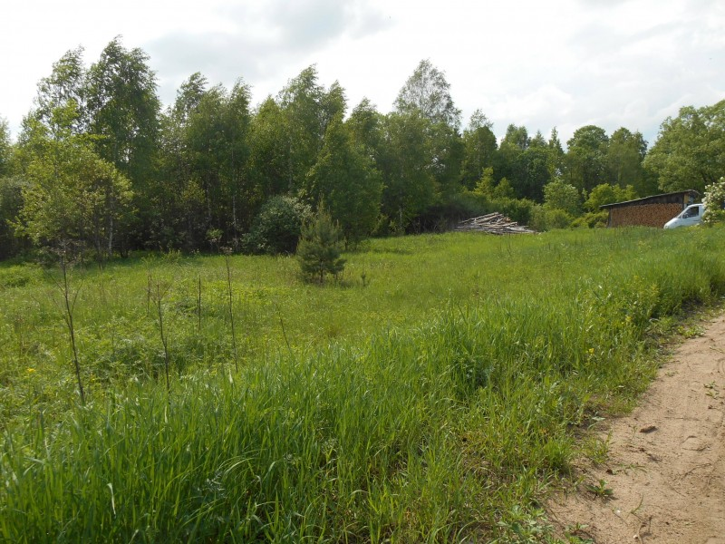 Продам участок по адресу Россия, Тверская область, Калининский район, Ферязкино фото 3 по выгодной цене