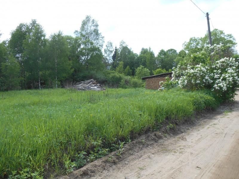 Продам участок по адресу Россия, Тверская область, Калининский район, Ферязкино фото 6 по выгодной цене