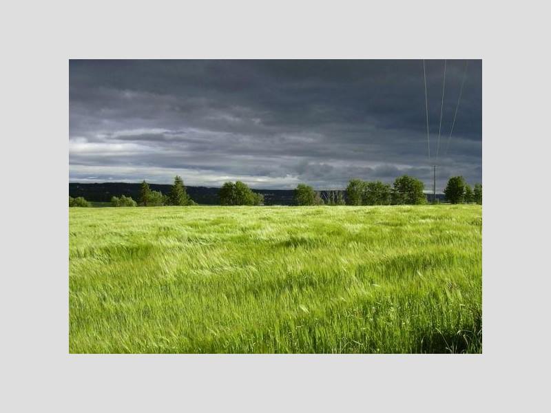 Продам участок по адресу Россия, Тверская область, Бежецкий р-н, Бежецк фото 0 по выгодной цене