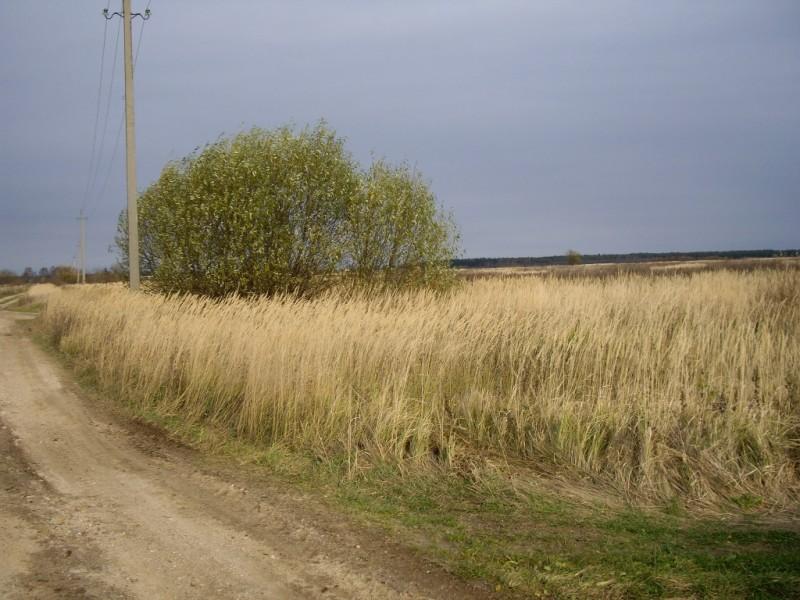 Продам участок по адресу Россия, Тверская область, Калининский район, Дер Краснаяора фото 3 по выгодной цене