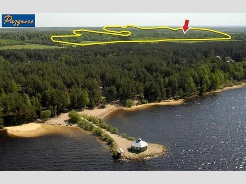 Продам участок по адресу Россия, Тверская область, Селижаровский р-н, Ланино фото 2 по выгодной цене