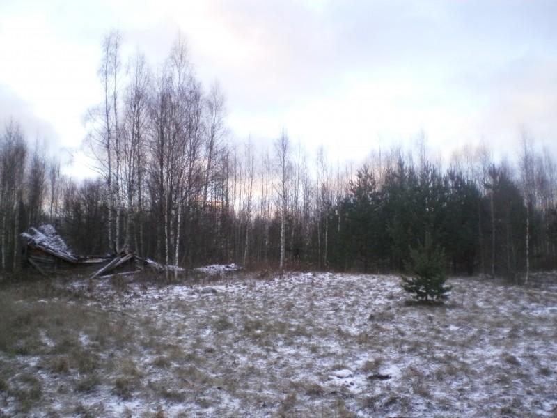 Продам участок по адресу Россия, Тверская область, Жарковский р-н, Рудня фото 0 по выгодной цене